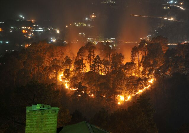 Wildfires burn through jungle near the northern hill town of Shimla in the Indian state of Himachal Pradesh on May 2, 2016
