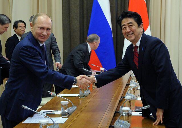 Russian President Vladimir Putin and Japanese Prime Minister Shinzo Abe shake hands at their meeting in the Bocharov Ruchei residence in Sochi, Russia, Saturday, Feb. 8, 2014.
