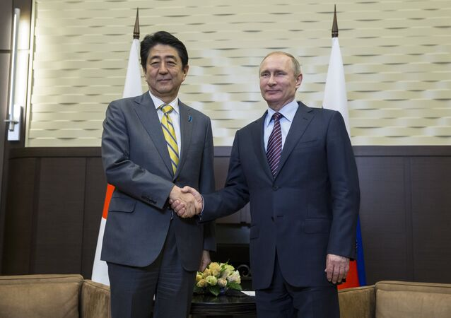 Russian President Vladimir Putin (R) shakes hands with Japanese Prime Minister Shinzo Abe during a meeting at the Bocharov Ruchei state residence in Sochi on May 6, 2016