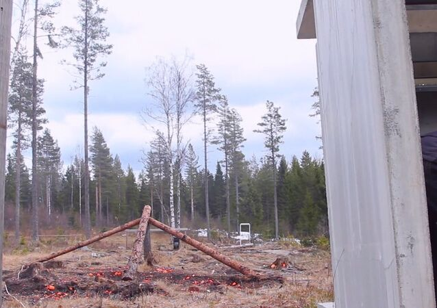 Blowing up a computer with swedish dynamite