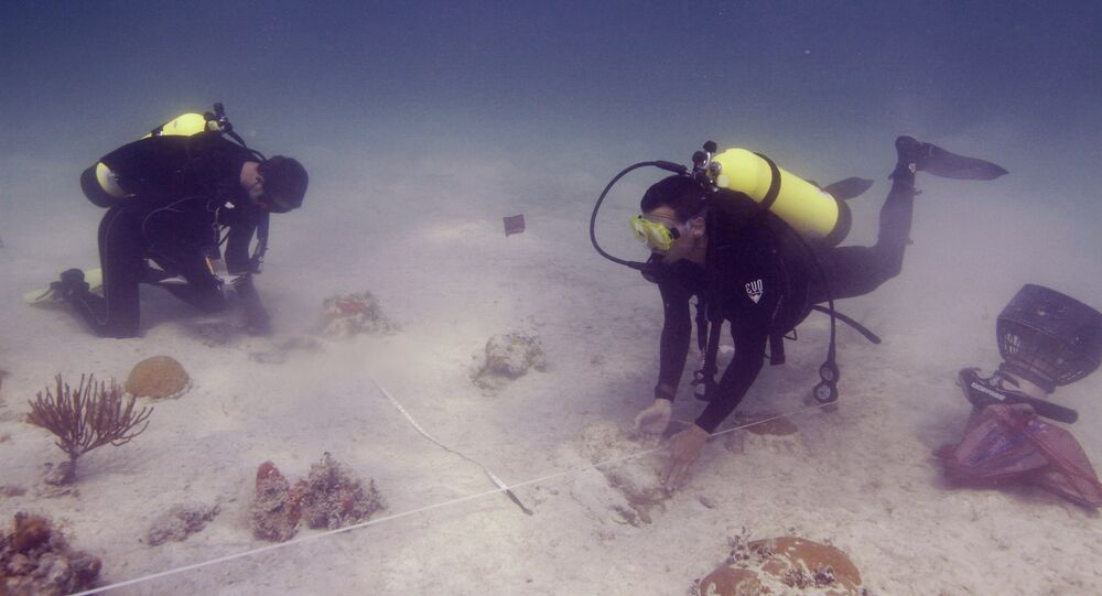 Underwater archaeologists. Florida (File)