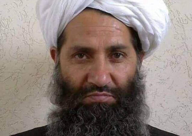Taliban new leader Mullah Haibatullah Akhundzada is seen in an undated photograph, posted on a Taliban twitter feed on May 25, 2016, and identified separately by several Taliban officials, who declined be named