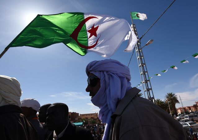 Algerian flag (File)