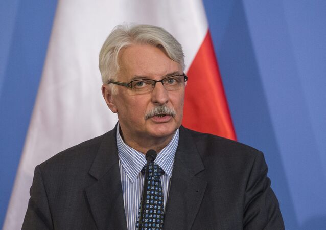 Polish Foreign Minister Witold Waszczykowski speaks during a joint press conference.