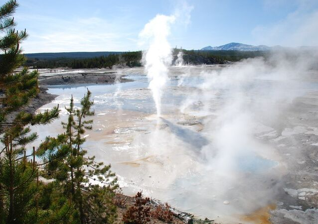 Man Falls Into Yellowstone Geyser After Leaving Path, Presumed Dead