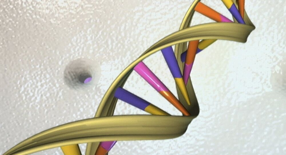 A DNA double helix is seen in an undated artist's illustration released by the National Human Genome Research Institute to Reuters on May 15, 2012