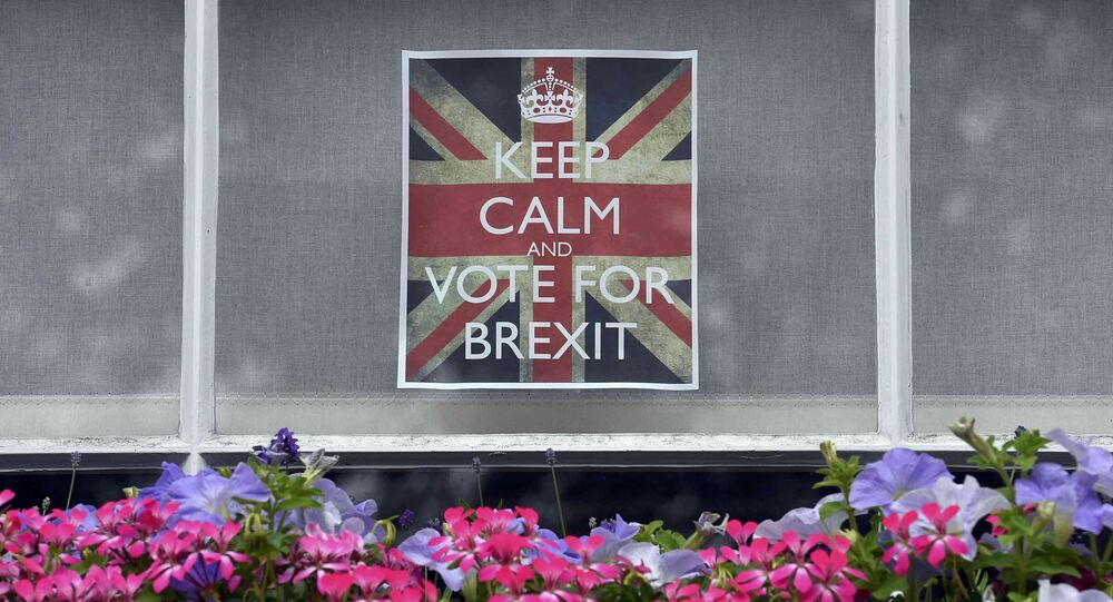 Vote leave posters are seen in a window in Chelsea, London, Britain, June 23, 2016.