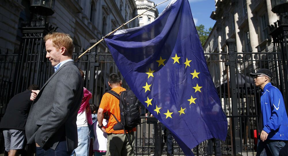 A man carries a EU flag, after Britain voted to leave the European Union, outside Downing Street in London, Britain June 24, 2016