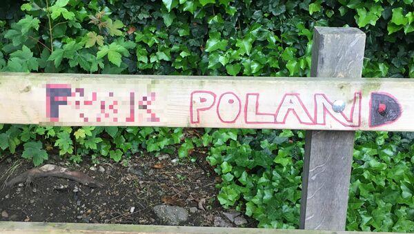 Anti-Polish immigrant graffiti in South London - Sputnik International