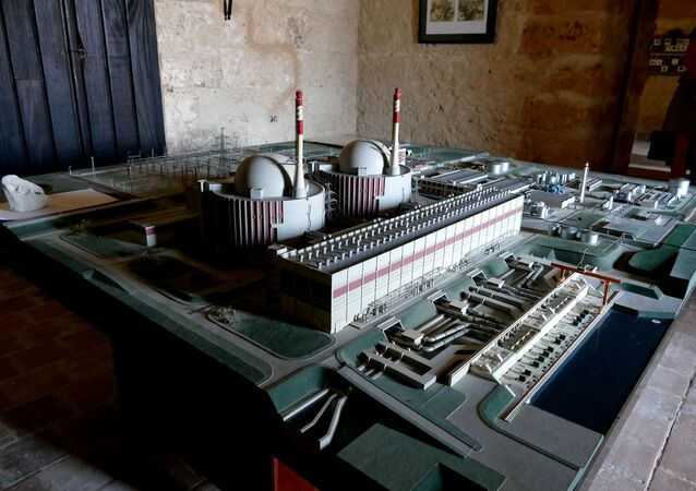 Nuclear plant model