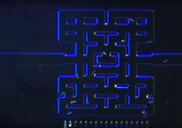 Mikroskopisk Pacman
