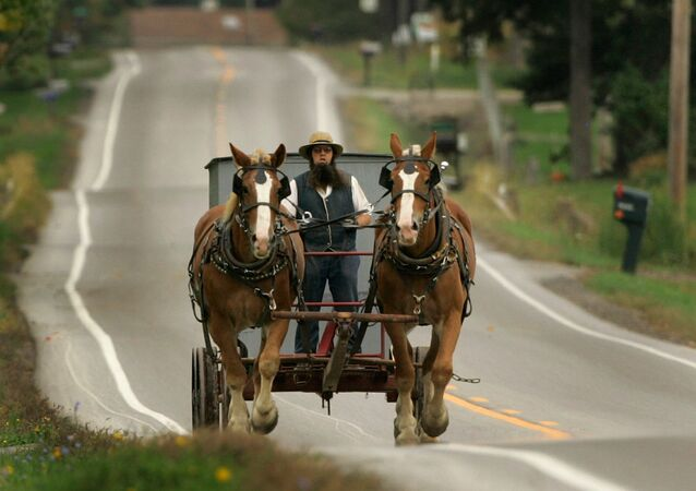 An Amish man drives his team of work horses down a road in Burton Township, Ohio