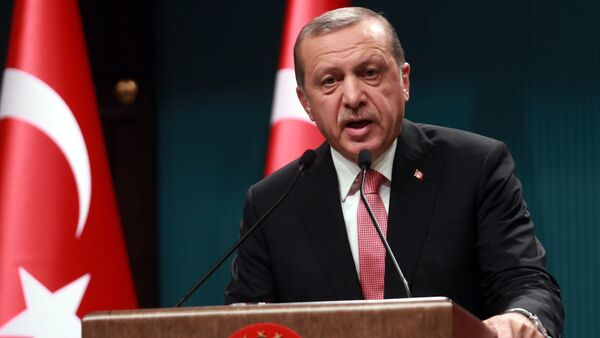 Turkish President Tayyip Erdogan speaks during a news conference following the National Security Council and cabinet meetings at the Presidential Palace in Ankara, Turkey, July 20, 2016 - Sputnik International