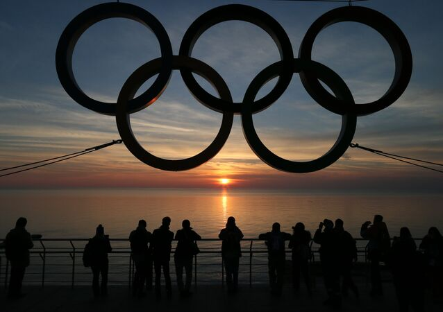 Olympic rings on the waterfront in the Adler district of Sochi. (File)