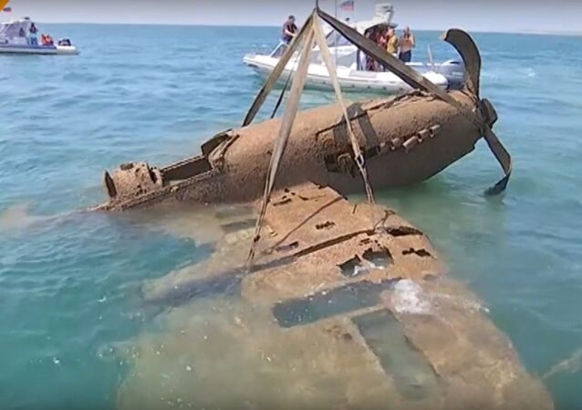 WWII Plane Salvage From the Kerch Strait