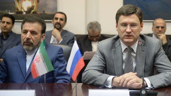 Russian Energy Minister Alexander Novak's meeting with Iranian IT Minister Mahmoud Vaezi - Sputnik International