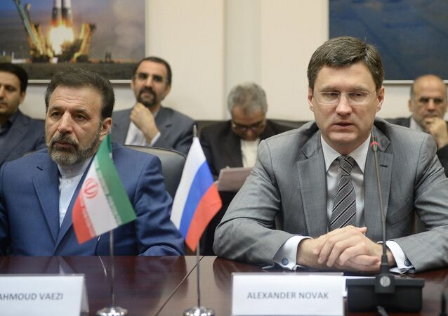 Russian Energy Minister Alexander Novak's meeting with Iranian IT Minister Mahmoud Vaezi