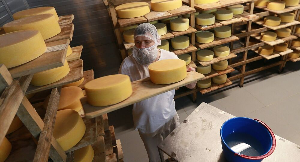Cheese blocks are washed and put into the cheese maturation storage at the Russky Parmezan cheese factory in the Istra Region of the Moscow Region.