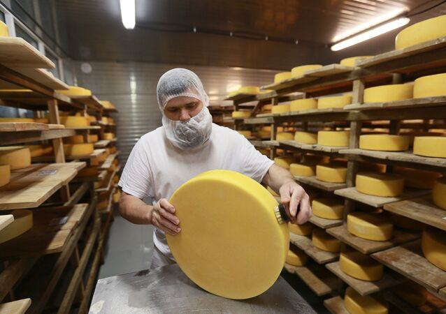 Cheese blocks are washed and put into the cheese maturation storage at the Russky Parmezan cheese factory in the Istra Region of the Moscow Region