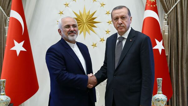 Turkey's President Tayyip Erdogan shakes hands with Iranian Foreign Minister Mohammad Javad Zarif (L) as they meet at the Presidential Palace in Ankara, Turkey, August 12, 2016 - Sputnik International