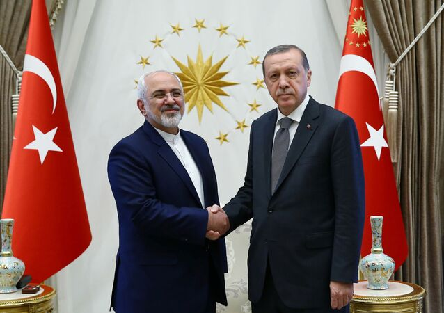 Turkey's President Tayyip Erdogan shakes hands with Iranian Foreign Minister Mohammad Javad Zarif (L) as they meet at the Presidential Palace in Ankara, Turkey, August 12, 2016