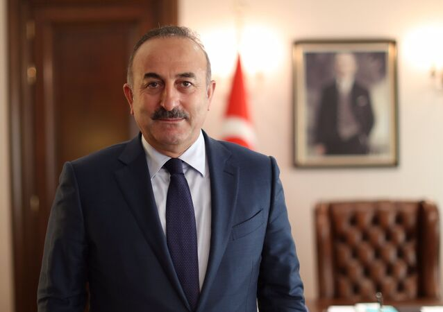 Mevlut Cavusoglu gave an exclusive interview to Sputnik