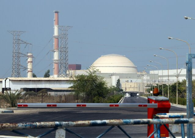 A general view shows the reactor building at the Bushehr nuclear power plant in southern Iran, 1200 kms south of Tehran, on August 20, 2010