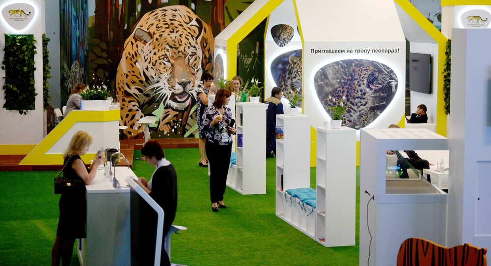 The Far Eastern Leopard stand at the Eastern Economic Forum in Vladivostok