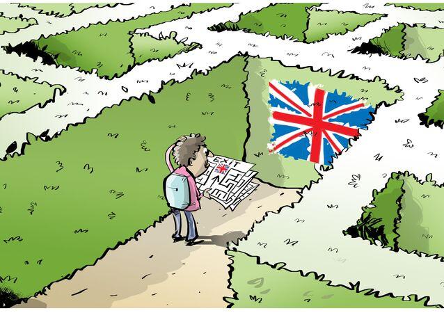 Migration Maze