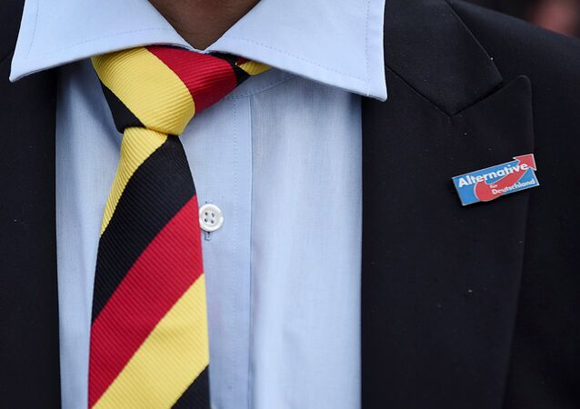 A man with a tie in German national colours wears a pin of the anti-immigrant Alternative for Deutschland (AfD) during the state election Mecklenburg-Vorpommern in Schwerin, Germany, September 4, 2016