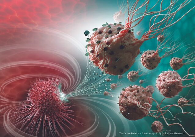 Legions of nanorobots target cancerous tumours with precision
