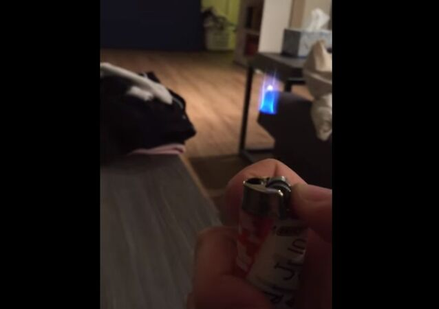 My lighter stopped working and now it's doing this...