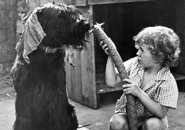 Child and dog play with a vacuum cleaner hose.