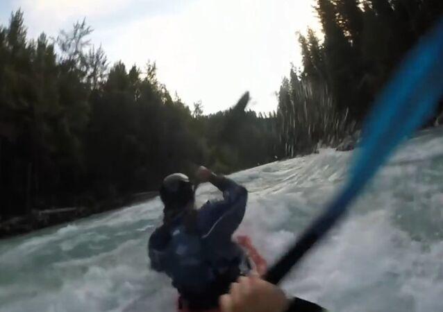 Fraser River 2016 Whitewater kayaking