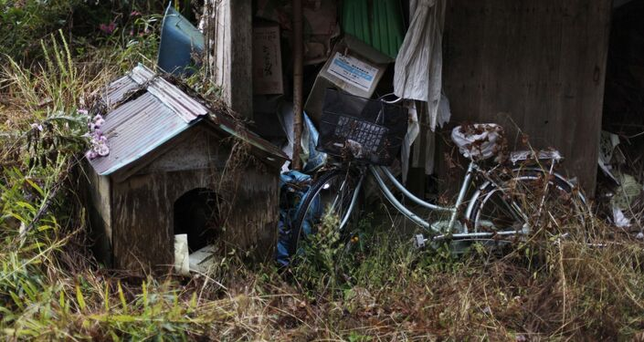 A bicycle and doghouse sit amongst overgrown grass and weeds at an abandoned farm in Iitate, just outside the 20 kilometer exclusion zone around the Fukushima Daiichi nuclear plant.