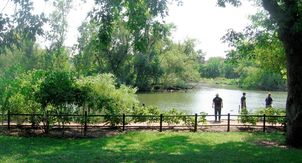 Human Head in Garbage Bag Found Floating in Chicago Park
