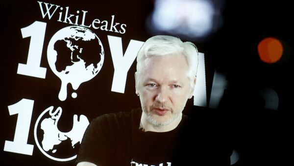 Julian Assange, Founder and Editor-in-Chief of WikiLeaks speaks via video link during a press conference on the occasion of the ten year anniversary celebration of WikiLeaks in Berlin, Germany, October 4, 2016. - Sputnik International