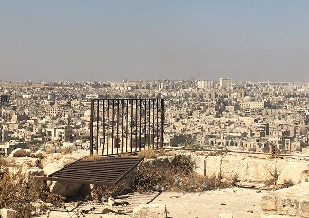 Terrorist-controlled eastern Aleppo districts as seen from the city's Citadel. (File)