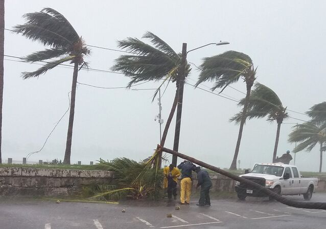 Maintainance workers try to remove a tree from a road in Nassau, New Providence island in the Bahamas, on October 6, 2016, after the passing of Hurricane Matthew