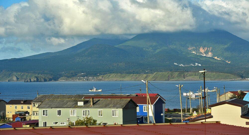 The Kunashir Island
