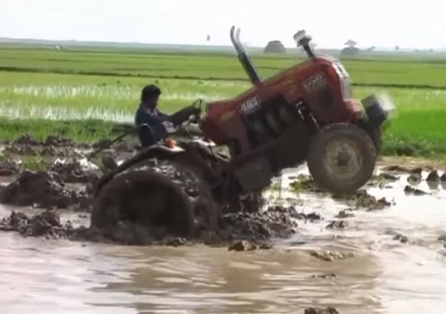 Extreme tractor drivers from India