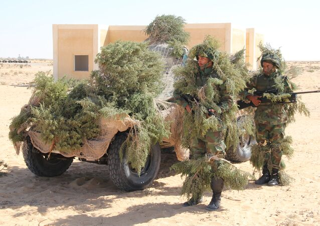 Russia, Egypt conduct Defenders of Friendship 2016 exercise. Day Three
