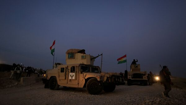 A kurdish peshmerga fighter look over as he stands on the top of the humvee in front of Islamic State position outside the town of Naweran near in Mosul, Iraq - Sputnik International