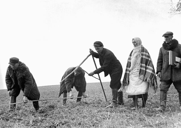 Peasants of the village Sobolevo divide land taken from Prince Ljubomirsky, a wealthy Polish landlord, October 1939, in Soviet territory formerly belonging to interwar Poland.