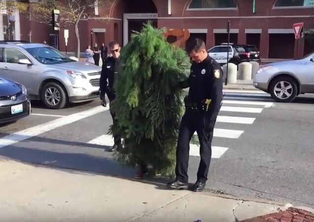 Funny Moment, Two Cops Arrest A Tree Blocking the Traffic in Portland