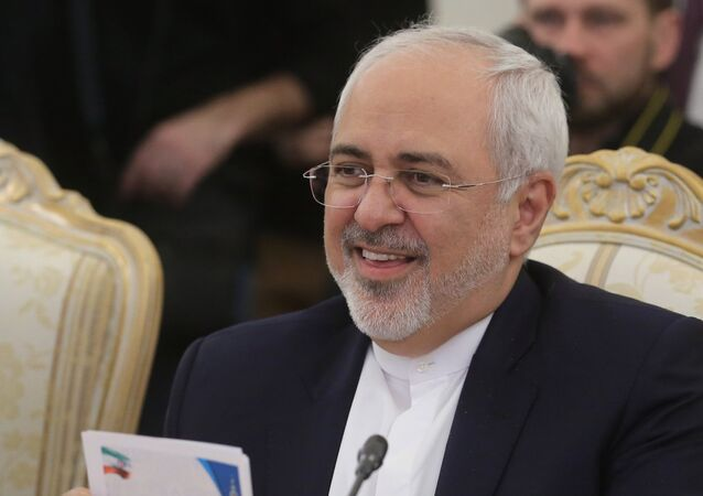 Iranian Foreign Minister Mohammad Javad Zarif attends a meeting with his Russian counterpart Sergei Lavrov in Moscow, Russia