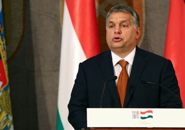Hungarian Prime Minister Viktor Orban gives a speech during his visit at the Bavarian state parliament in Munich, Germany October 17, 2016.