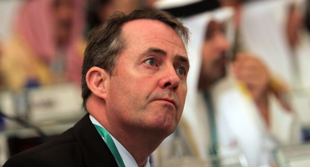 UK Minister for International Trade Liam Fox (File)