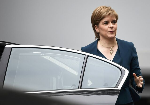 Nicola Sturgeon, First Minister of Scotland smiles as she arrives at Downing Street in London, Britain October 24, 2016.