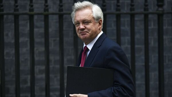David Davis, Secretary of State for Exiting the European Union arrives at Downing Street in London, Britain October 24, 2016. - Sputnik International